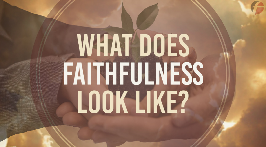 What Does Faithfulness Look Like-